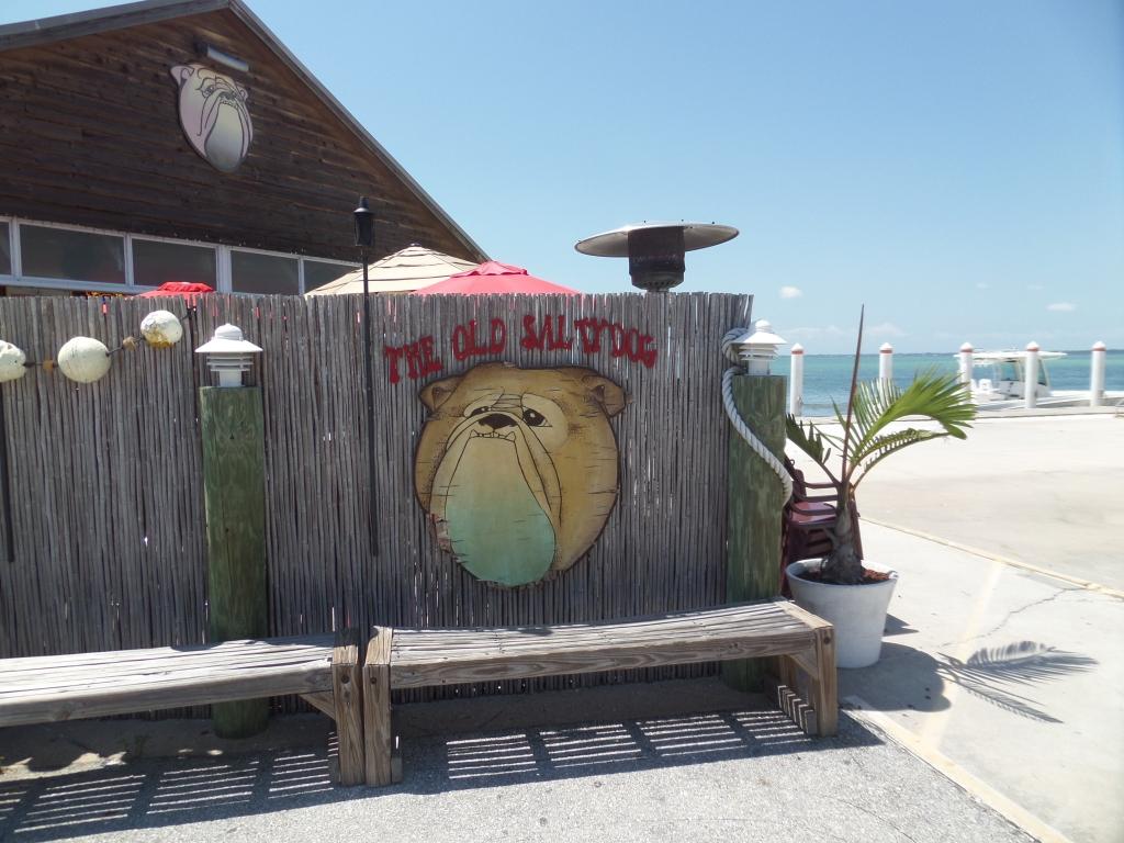 Old Salty Dog - Sarasota